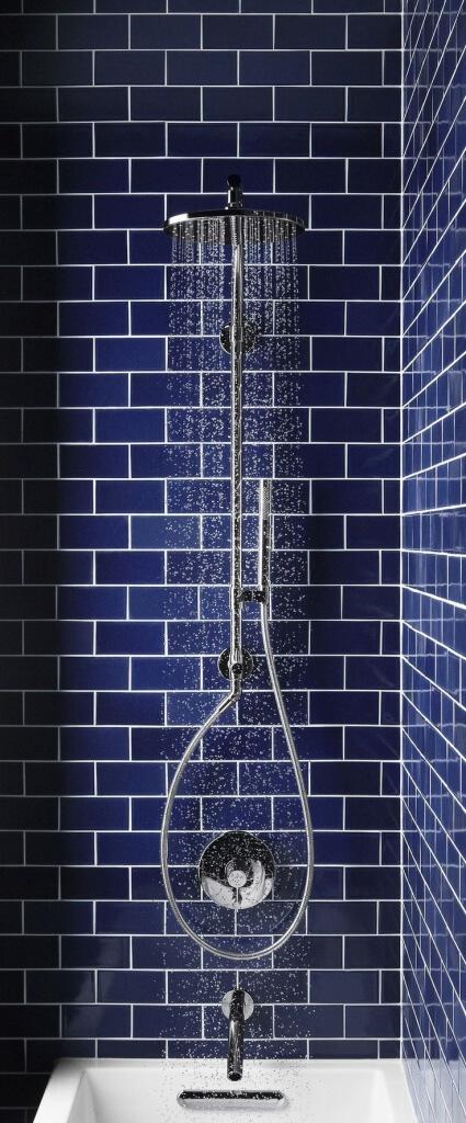 Pivotech_navybathroom3